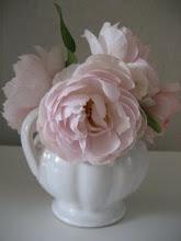 engelska rosor