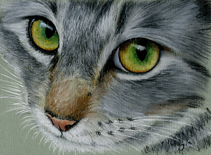 [oil+pastelcat.jpg]