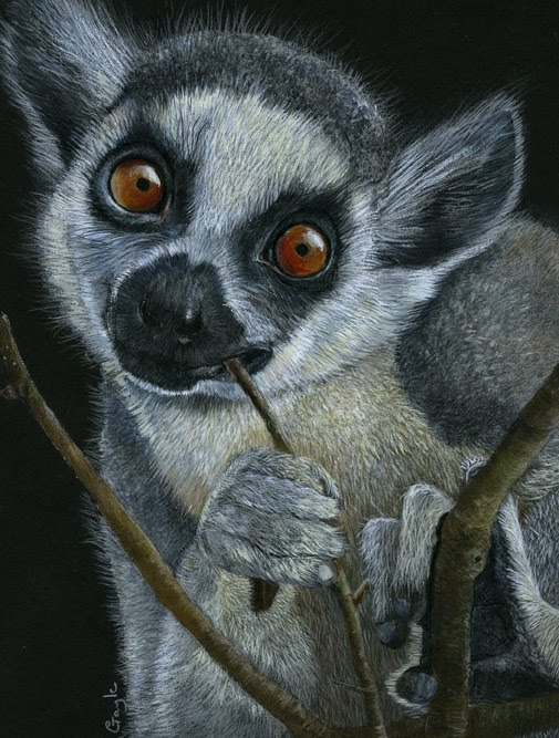 Fur In The Paint Ring Tailed Lemur