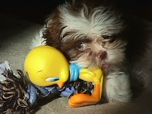 duckie..