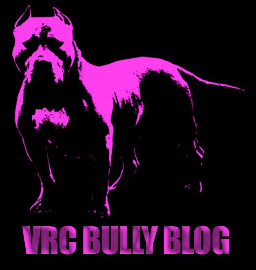 VRC Bully Blog