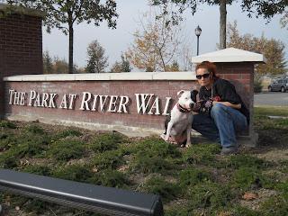 Free Dog Neutering In Bakersfield