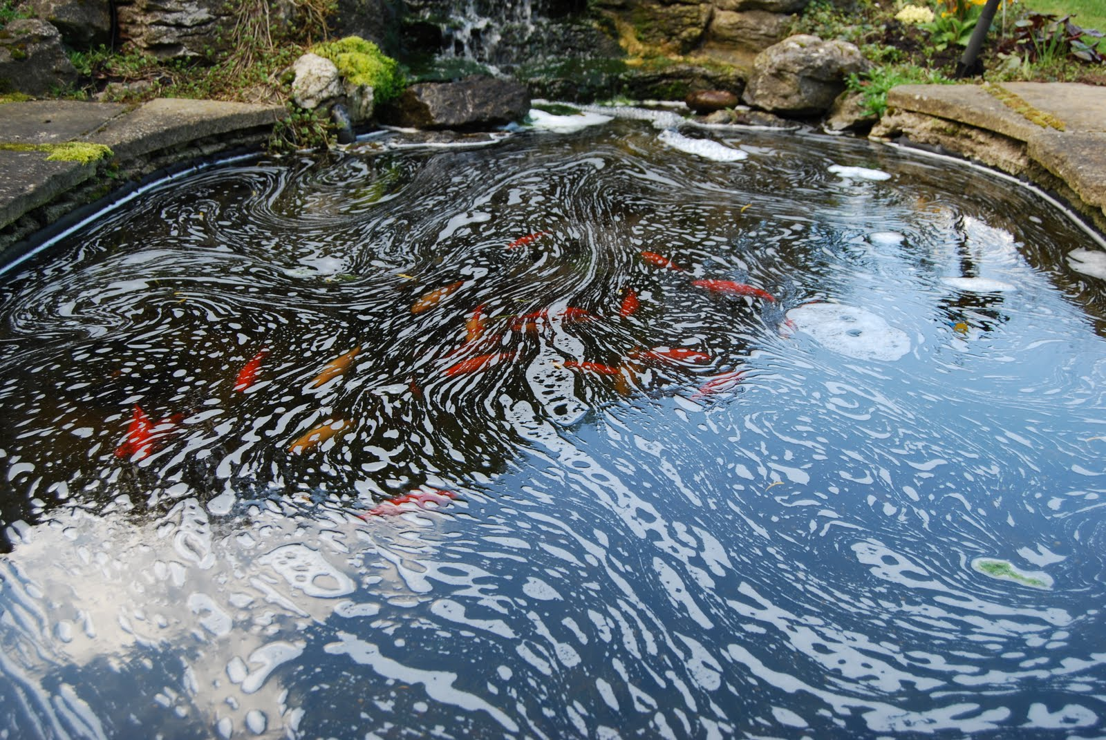 how to add water to fish pond