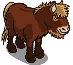 Farmville Unreleased Icelandic Horse And Foal Share Now