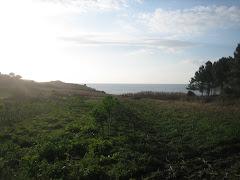 Braña da Costa preto da aldea de Abuín.