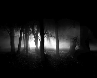 http://3.bp.blogspot.com/_PwVUiYB6es0/TOmcEdS6lrI/AAAAAAAAAvY/ZLiFffSidVU/s400/Dark-Forest-the-dark-side-of-everything-5587682-1023-818.jpg