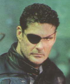 The Hoff as Nick Fury.