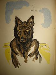"""""""Dingo"""", illustré par Pierre Falké, Jonquières, 1923"""