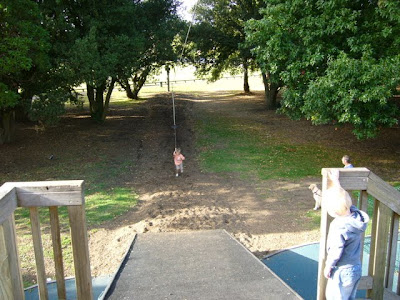 6 Swings (half Chained, Half Flat Seats), 1 4 Way Tyre Swing, A Flying Fox,  A Small Wooden Set Of Platforms Connected By A ...