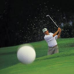 http://3.bp.blogspot.com/_PzcAUzOF8wU/STxG1YLngLI/AAAAAAAAAEU/6x_vRfYCP9Y/S259/Golf+Tips.jpg