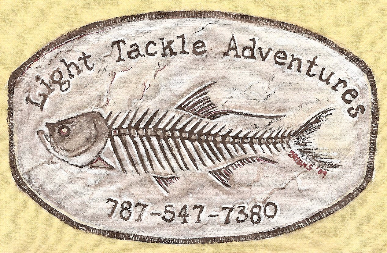Light Tackle Adventure Tarpon Fishing Puerto Rico,Boqueron Bay