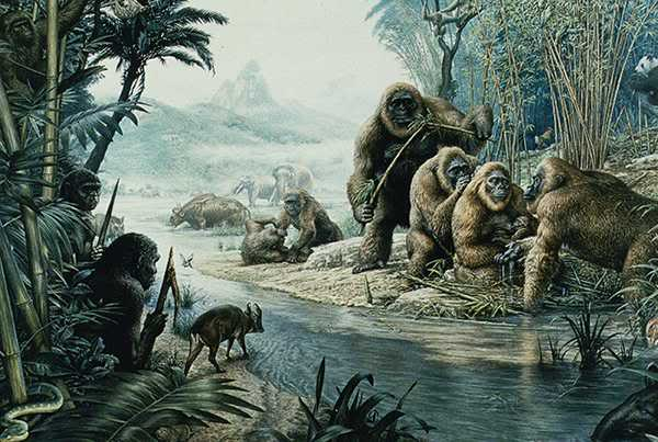 Bigfoot  also known as Sasquatch  is an alleged ape-like creature    Gigantopithecus Giganteus