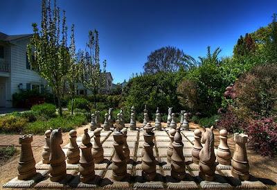 Fiddler parra y sus ovejas vistas de ajedrez for Ajedrea de jardin