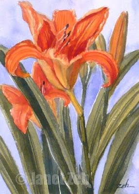 orange daylilies watercolor