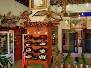 A falconry shop in Souq Waqif