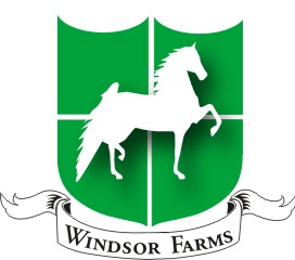 Windsor Farm Saddlebreds
