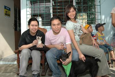 Former PAWS Shelter dog Putot - MeFindHome.org