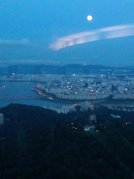 Seoul Tower View