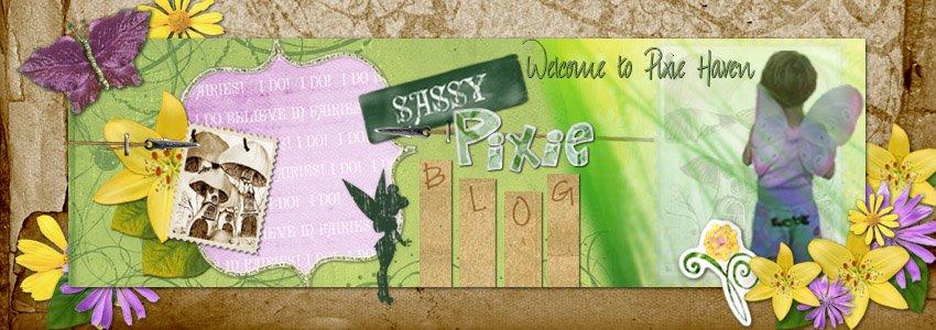 SassyPixie Blog