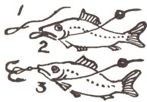 Мини энциклопедия рыбалки от рыбака-любителя: Ловля рыбы