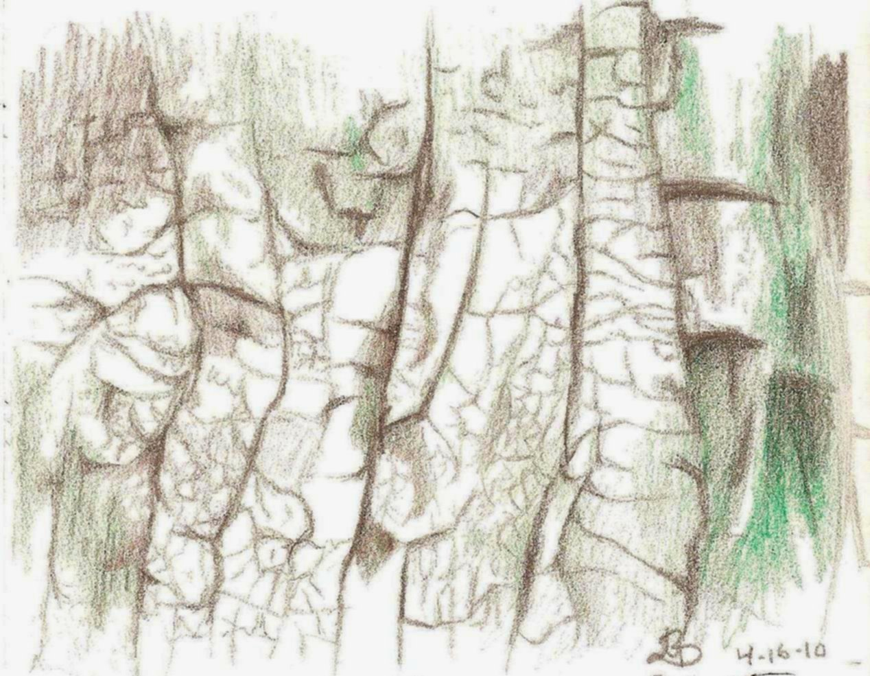 Tree Leaves Texture Drawing