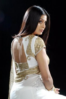 Saree Blouse Back Designs 2010 | Saree Blouse Patterns