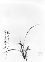 Yamada Kensai - Orkidea