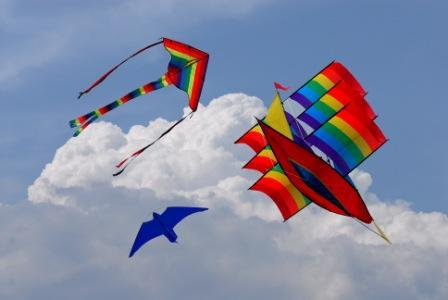 Gujarat International Kite Festival 2011  Wallpapers Pictures
