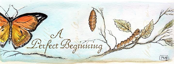 A Perfect Beginning