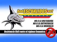 RED DE ESCUALIDOS