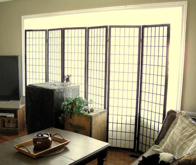 #10 Window Covering Ideas