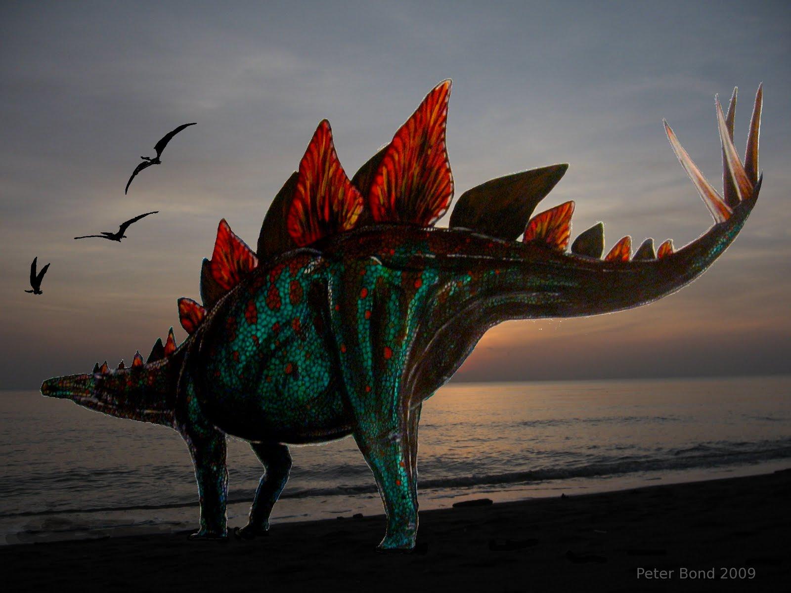 [Peter+Bond+Stegosaurus.JPG]