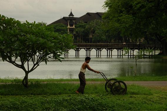 potong rumput di yangon myanmar