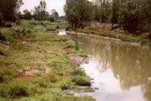 Arroyo El Gato