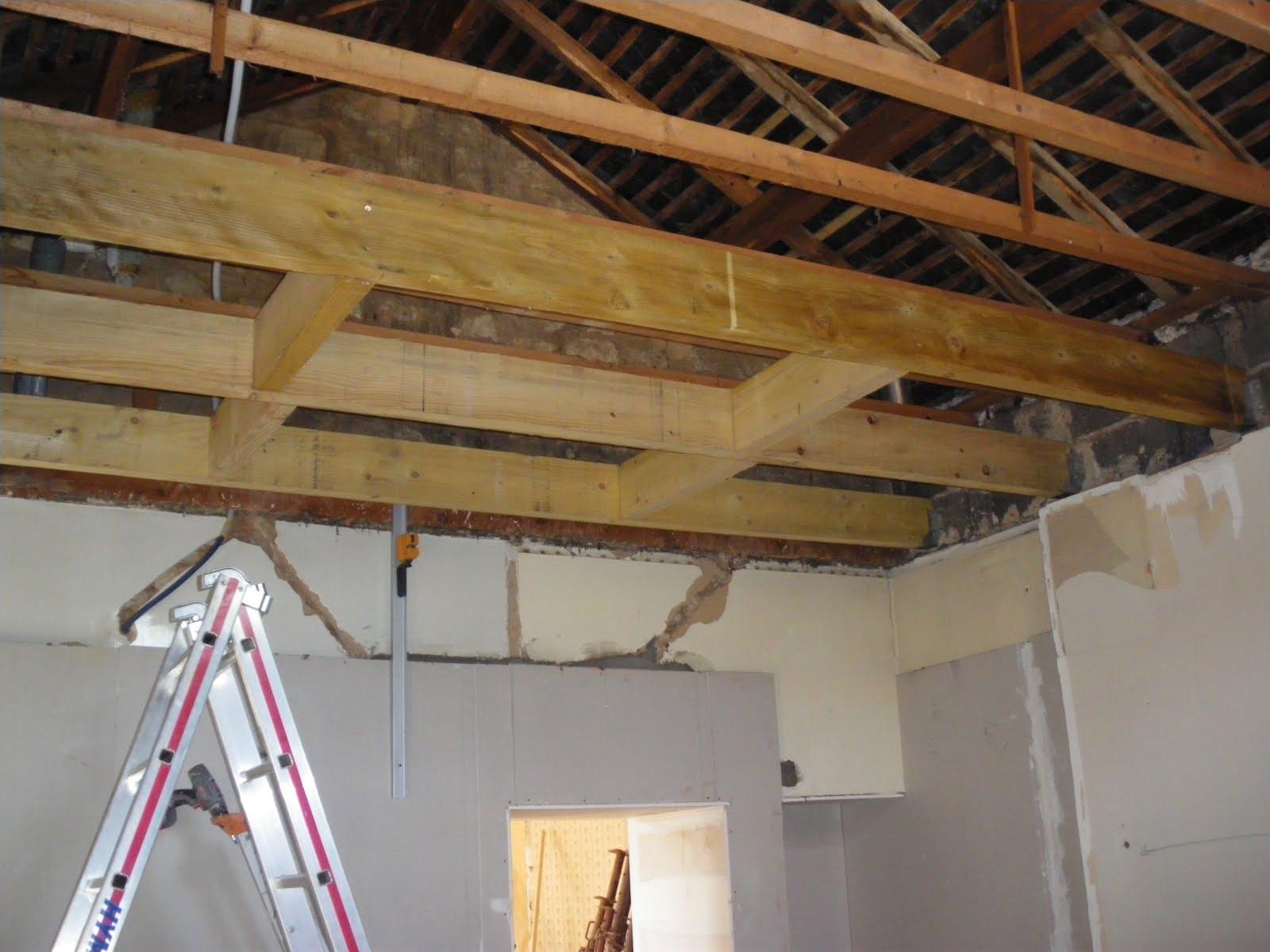 Isolation phonique et thermique prestataire de service for Renovation plafond placo