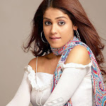 Kollywood Actress Genelia D'souza Hot And Sexy Photos