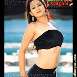 Sexy Tollywood Beauties