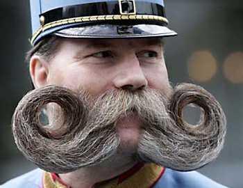 mustata.jpg