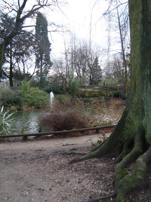 Kings Heath Park