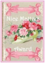 Nice Matters Award