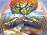 Meditação do dia