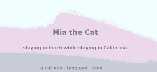 Mia the Cat