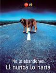 NO LO ABANDONES