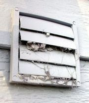 Dryer Vent Cleaning and Fall Maintenance Tips from the Green Bay Wizard