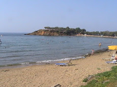 THE BEACH