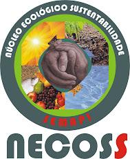 """O SEMAPI """"cria raízes"""" para contribuir com a SUSTENTABILIDADE   03/10/2008"""