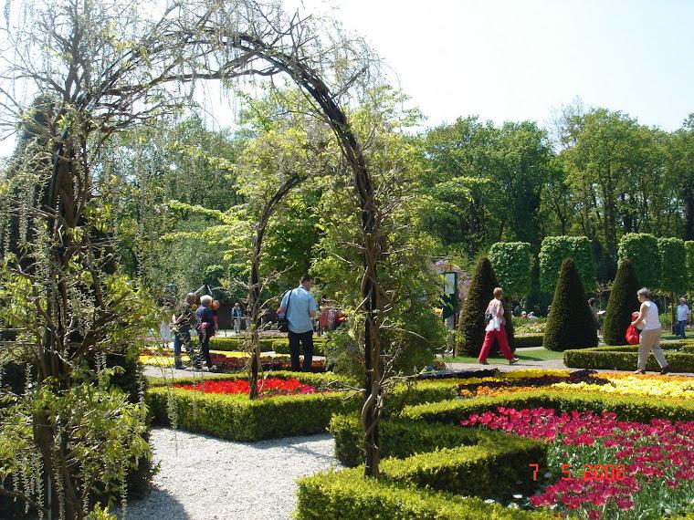 Сад-парк тюльпанов Кёкенхоф