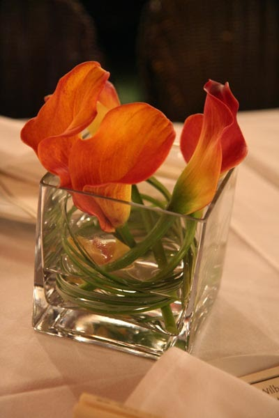 Calla lily cafe coupons