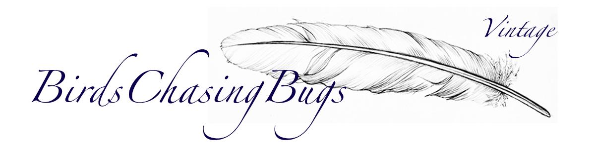 BirdsChasingBugs