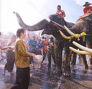Songkran Festival Elephant